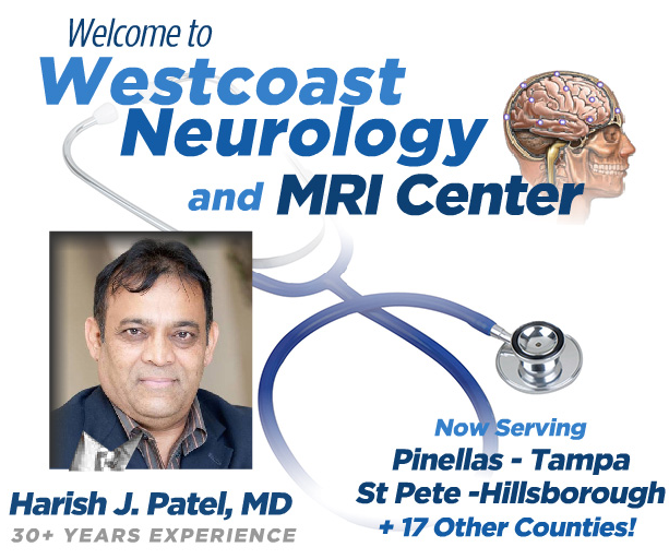 Neurologist St Petersburg FL